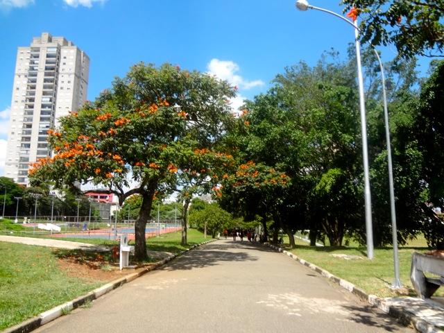 Saiba como o Ceret se tornou o Parque preferido da Zona Leste.